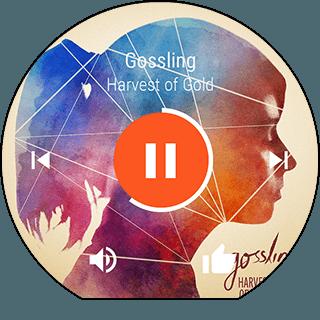gui_google_music